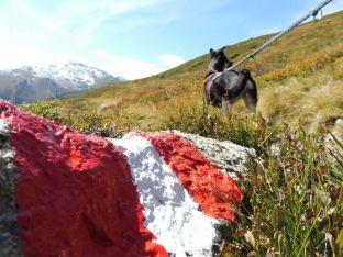 Alpenuberquerung-Fügen-Hohenfügen-50