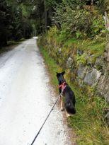 Alpenuberquerung-Mayrhofen-Pfitschen-72