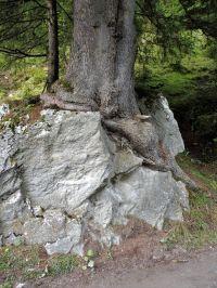 Alpenuberquerung-Mayrhofen-Pfitschen-84