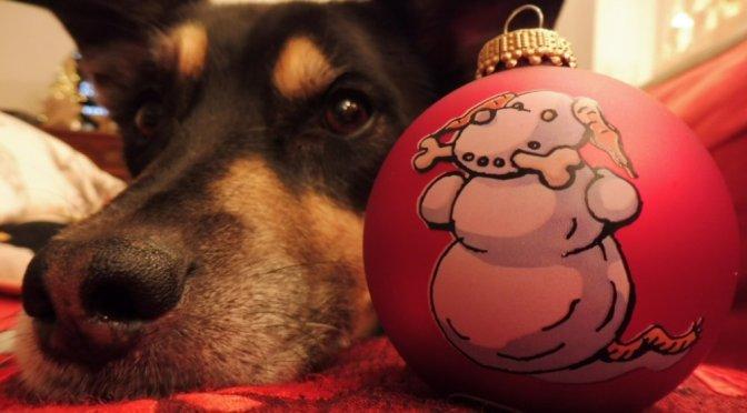 Luis wünscht fröhliche und friedliche Weihnachtstage