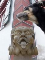 Noerdlingen-Ries-mit-Hund_14