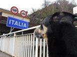 Im März 2018 überschreiten wir am Lago Maggiore nach Italien. Danach war die Blog-Luft raus.