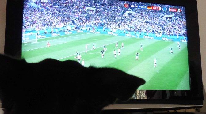 WM-Auftakt: Erster Sieg! [für Luis]