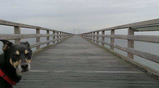 Kalifornien, Tag 2: Schönberger Seebrücke