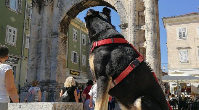 Istrien mit Hund: Pula (ohne Worte)