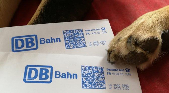 Via Jacobi 2020: Update Unterkünfte + Zugtickets (mit Hund)